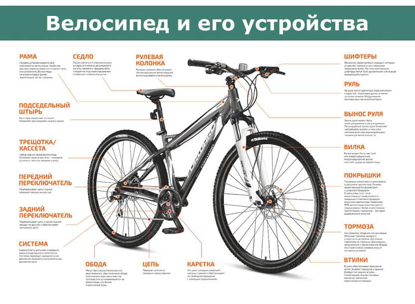 Сколько стоит велосипед